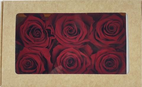 Стабилизированный Бутон Розы Optimum Flowers Standart . Цвет Бордовый (Диаметр 7см)