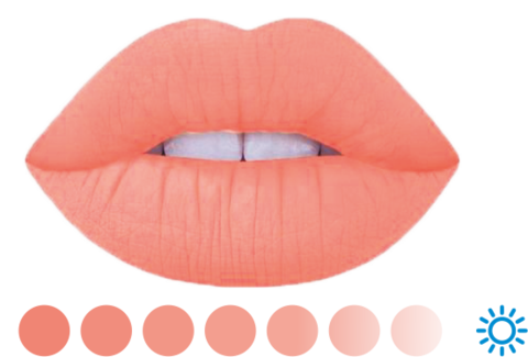Коралл #11 • LIP BLUSH • пигмент для губ