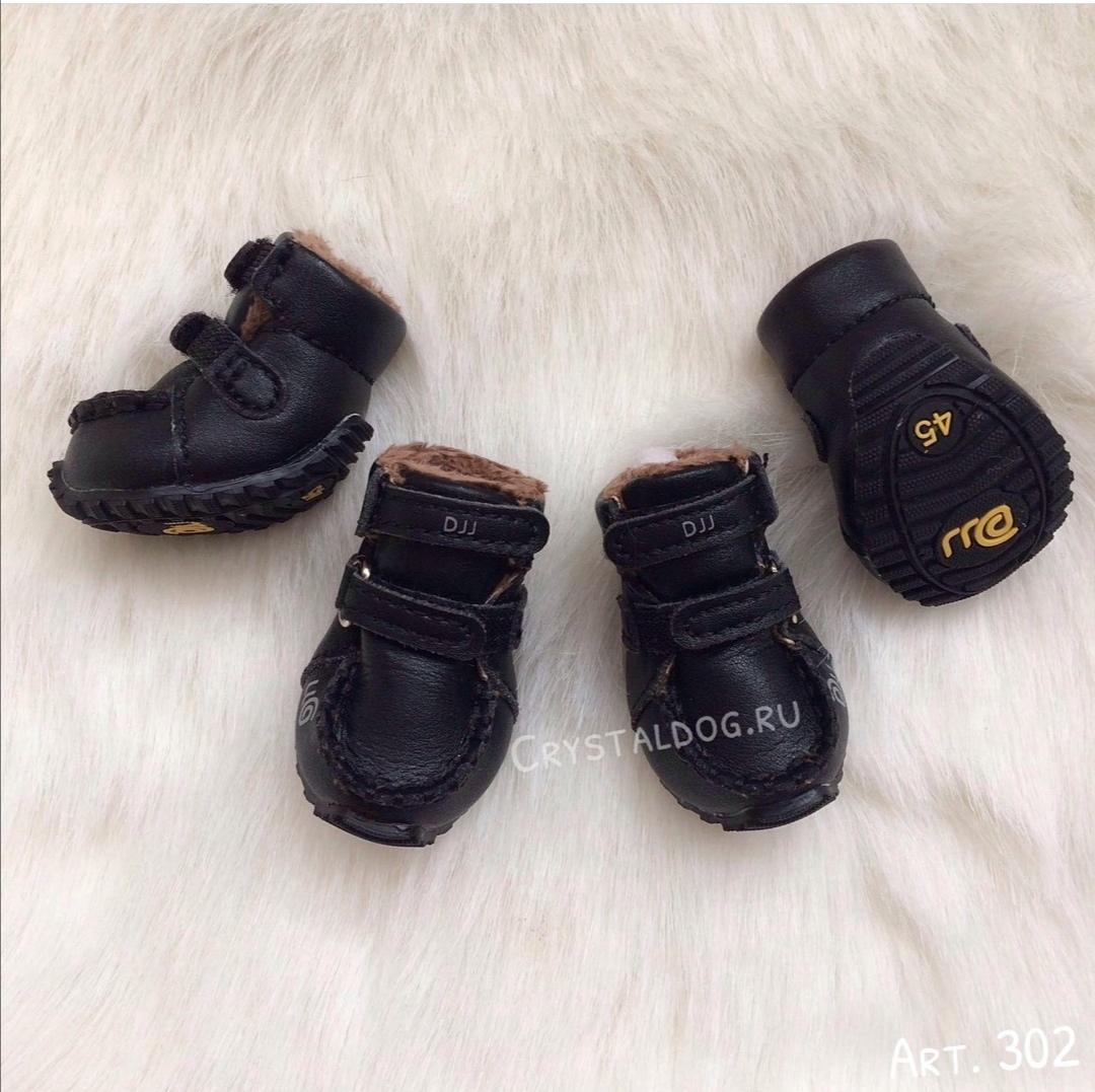 ботинки для чихуахуа