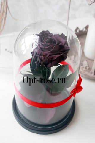 Роза в колбе премиум вип фиолетовая