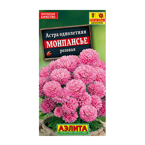 Астра Монпансье розовая (Аэлита)