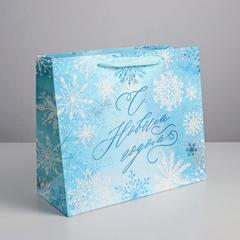 Пакет ламинированный горизонтальный «Морозный день», ML 27 × 23 × 11,5 см, 1 шт.