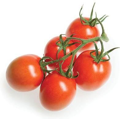 Томат Прунус F1 семена томата индетерминантного (De Ruiter Seeds / Де Ройтер Сидс) Прунус_1.jpg