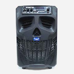 Портативная колонка ND-W66 с пультом и микрофоном