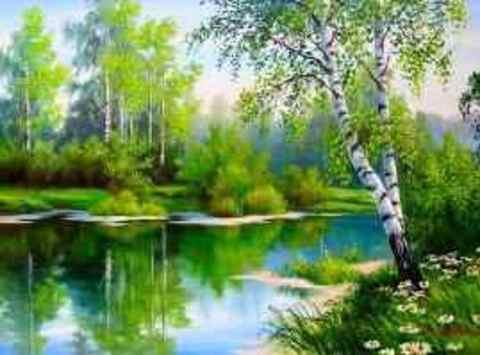 Картина раскраска по номерам 50x65 Береза у реки