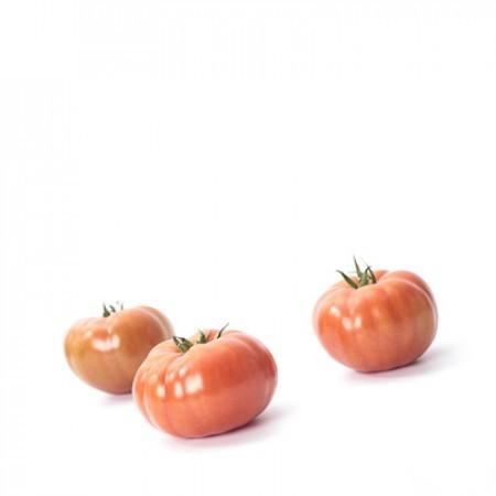 Rijk Zwaan Ладога F1 семена томата индетерминантного (Rijk Zwaan / Райк Цваан) Томат_Ладога.jpg