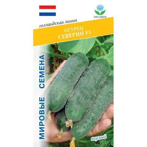 Семена Огурец Северин F1 (Vita Green)