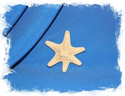 Рогатая звезда 6 лучей 7 см.