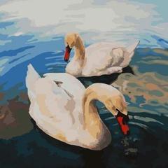 Картина раскраска по номерам 50x65 Два лебедя