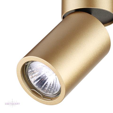 Потолочный светильник 3895/1C серии DUETTA