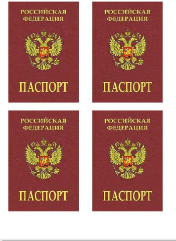 Печать на вафельной бумаге, Паспорт-5