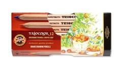 Карандаши цветные неокрашенный корпус jumbo TRIOCOLOR 3152, 12 цветов