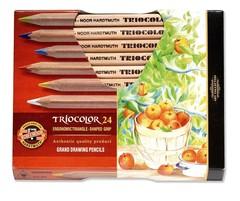 Карандаши цветные неокрашенный корпус jumbo TRIOCOLOR 3154, 24 цвета