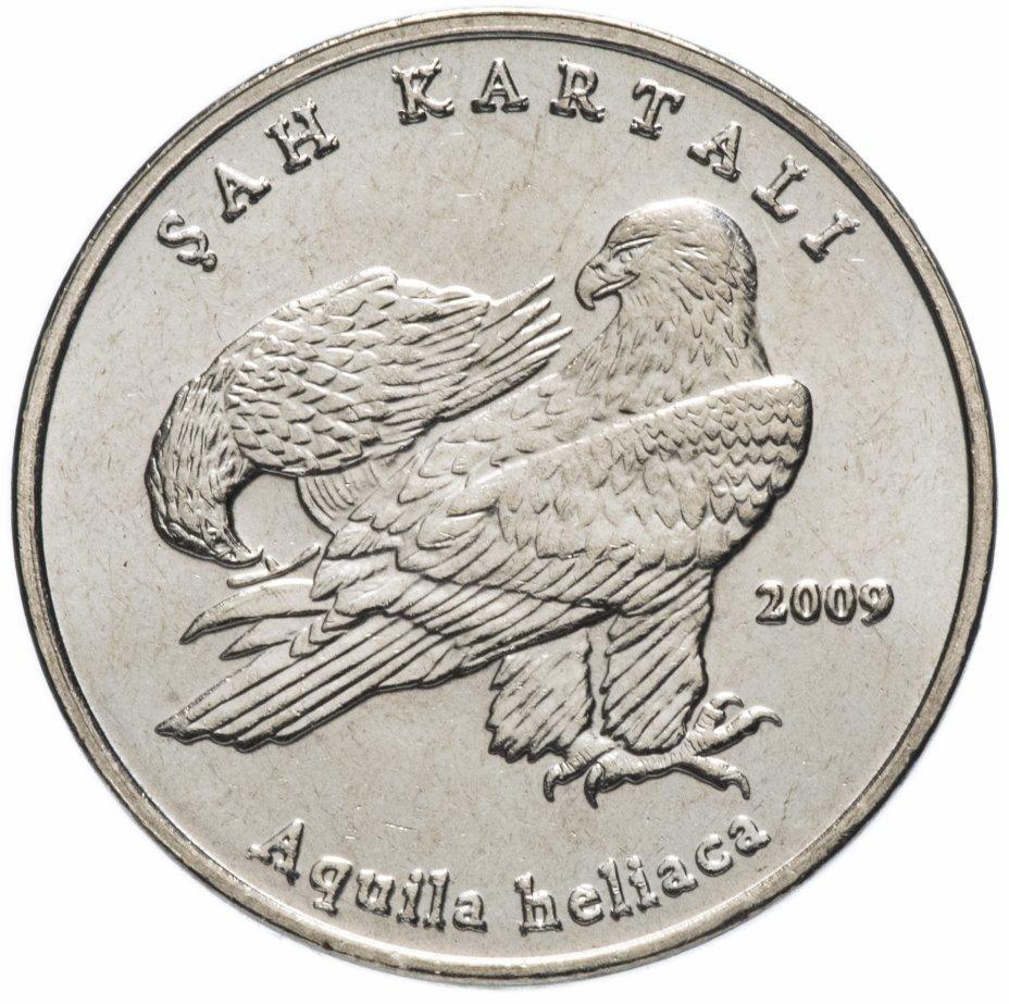 1 лира. Фауна Турции - Орел. Турция. 2009 год. UNC