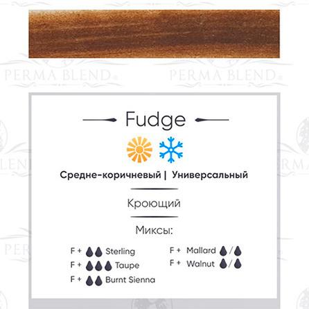 """FUDGE"" пигмент для бровей. Permablend"