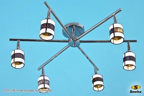 2621/03C-6 светильник потолочный