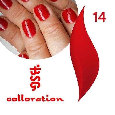 BSG Colloration, №14 Классический красный оттенок купить за 650руб