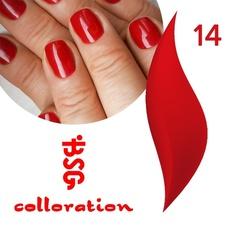 BSG Colloration, №14 Классический красный оттенок