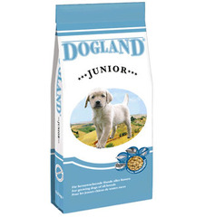 Dogland Junior