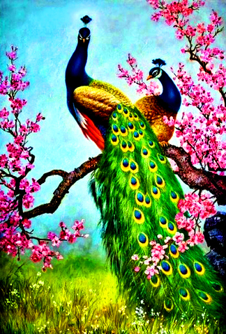 Алмазная Мозаика 30x40 Павлины отдыхают на цветущей ветке (арт. GB70042 )