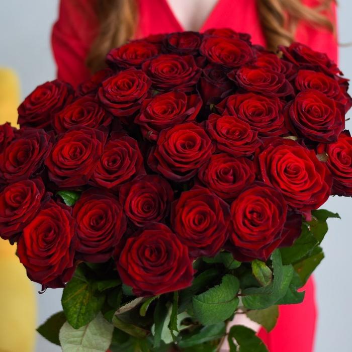 Купить букет 35 красных бордовых роз в Перми