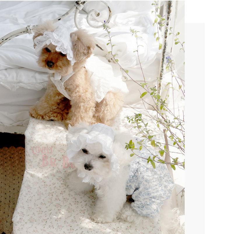 510 PA - Чепчики для собак