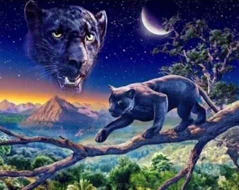 Алмазная Мозаика 40x50 Черная пантера (арт. HWA3143 )