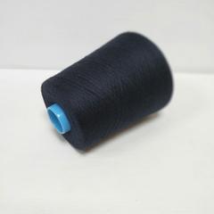 Biagioli modesto, Aliseo, Кашемир 100%, Черно-синий, 2/48, 2400 м в 100 г