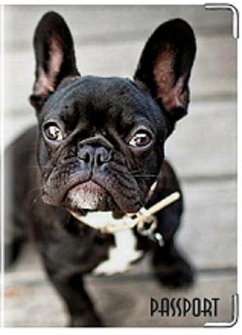 """Обложка для ветеринарного паспорта """"Французский бульдог"""" (чёрный)"""
