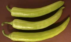 Эскудеро F1 семена перца сладкого (Vilmorin / Вильморин)