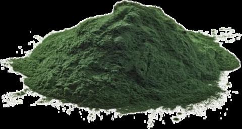 Pattra Organic Спирулина порошок 75 г