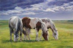 Картина раскраска по номерам 50x65 Три лошади
