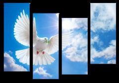 """Модульная картина """"Белый голубь"""""""