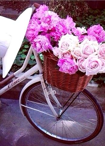 Алмазная Мозаика 38x28 Цветы в корзине на велосипеде (арт. K1704)
