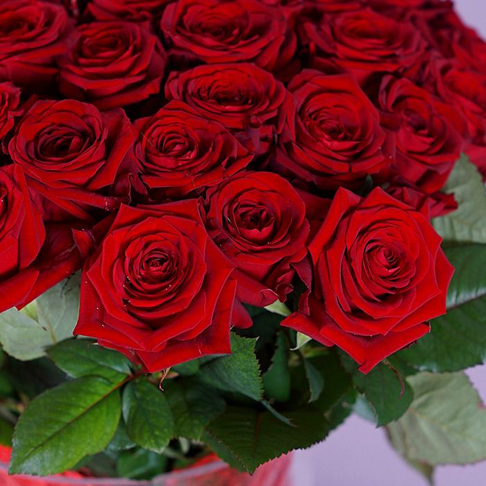 Букет 51 красная роза Red Naomi  80см 90см 100см