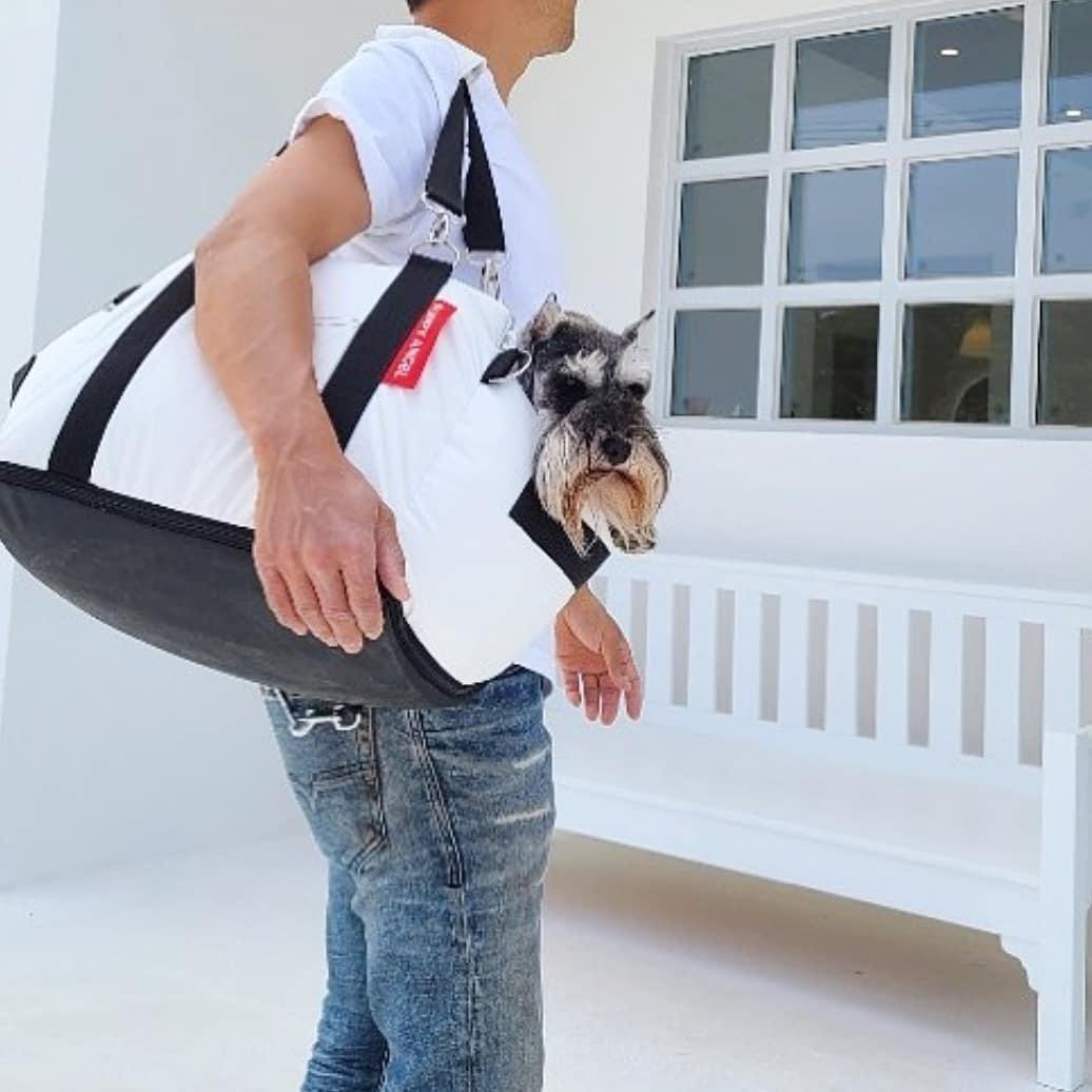 Автопереноска для собак