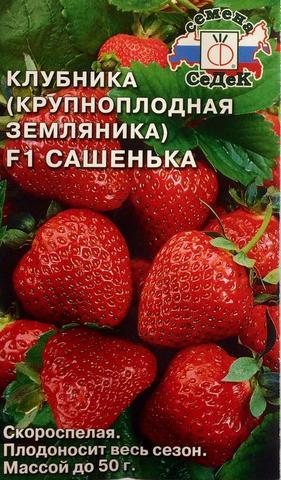Семена Земляника Сашенька F1