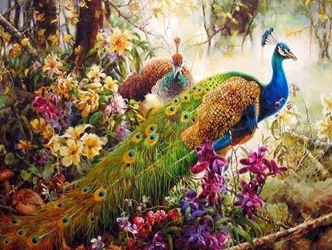 Алмазная Мозаика 40x50 Павлины среди цветов (арт. TCH8524 )
