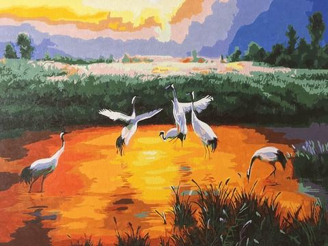 Картина раскраска по номерам 50x65 Цапли в мелком пруду