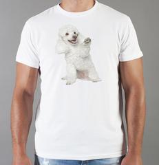 Футболка с принтом собаки (Собачки,Пудель) белая 0033