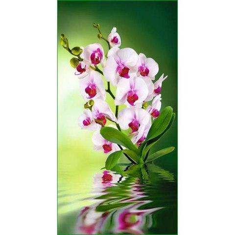 Орхидея 134x261 см
