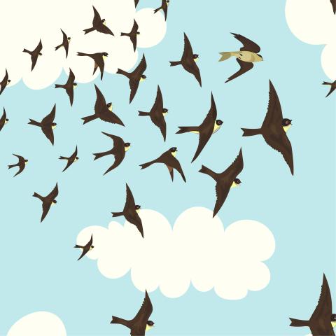 Паттерн со стрижами и облаками в голубом небе