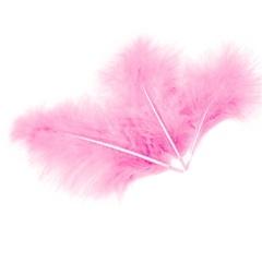 Перья, Светло-розовый, 10*15 см, 30 шт.