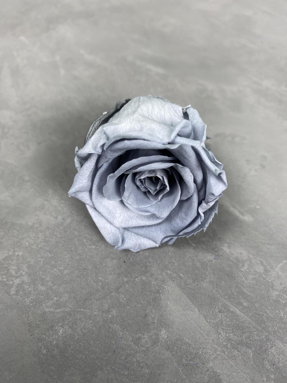 Роза классическая серая d=3,5-4 см