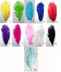 Перья страуса  декоративные  45-50 см. (цена за 1 шт.) , (выберите цвет)