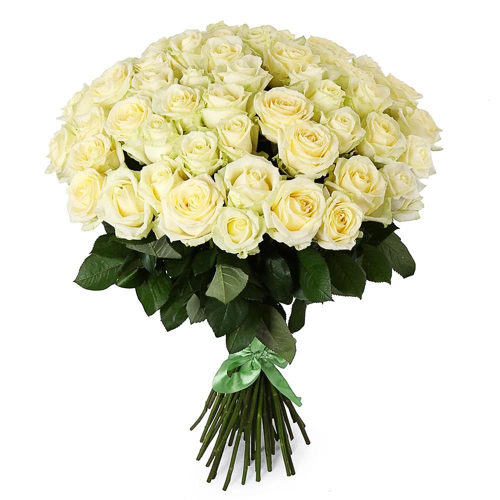 51 белая роз (60 см)