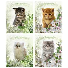 Тетрадь школьная Тетрапром Котята и цветы A5 24 листа в клетку (обложка в ассортименте)