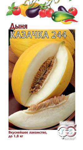 Дыня Казачка 244 1 г