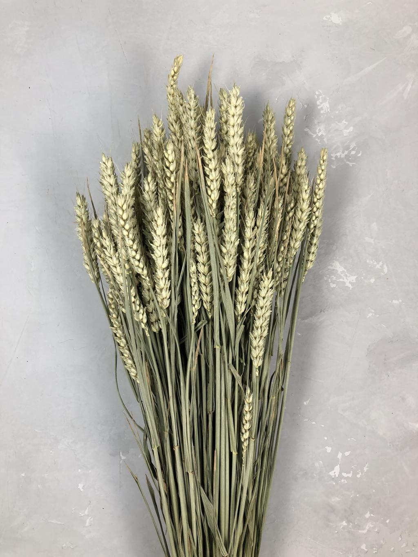 Пшеница натуральная