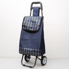 Тележка багажная ручная 70 кг DT-120 синяя